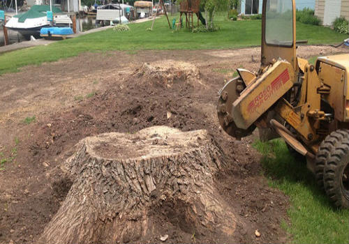 stump grinding in hesperia